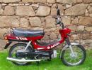 HERO PUCH AUTOMATIC 49